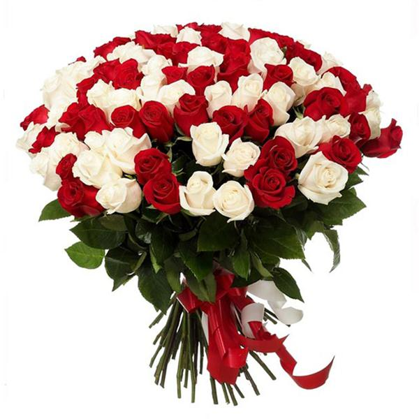Bouquet of 101 Red White Roses