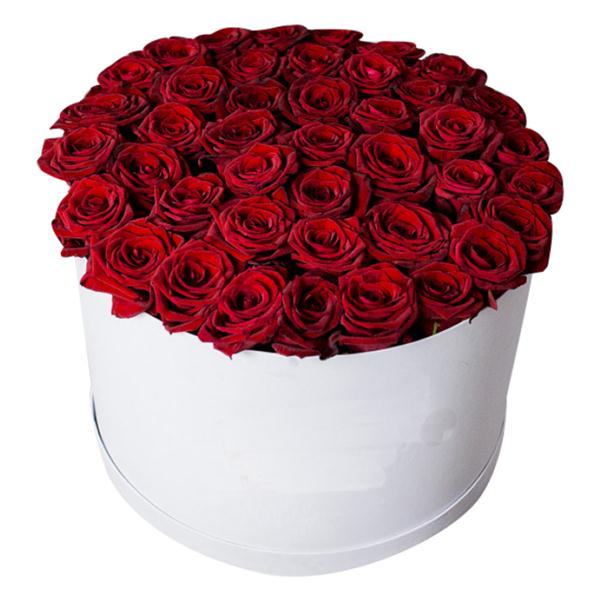 Cylinder Box 51 Red Rose